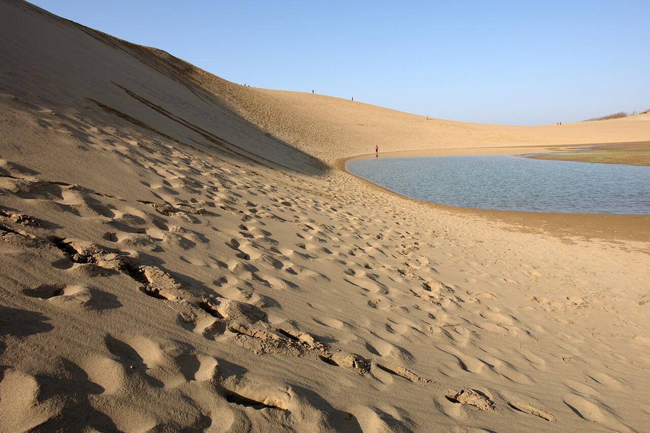 砂丘と梨が有名な鳥取県の概況は