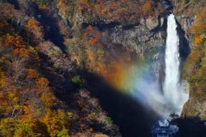 栃木県の有名商業施設を紹介