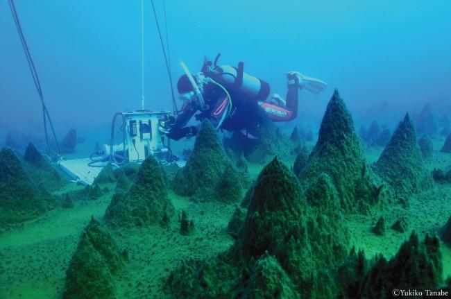 <セイコー プロスペックス>スカルブスネス湖底に広がる神秘の森を再現したモデルを発売