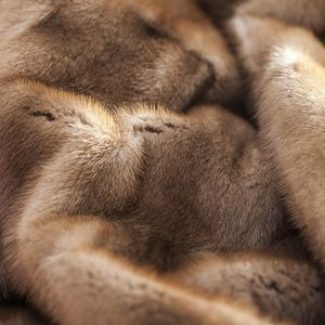 毛皮にも種類がある!さまざまな毛皮の種類と特徴